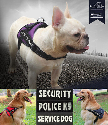 Reflective Dog Harness Soft Vest With Service Dog Patches Collar for Large Dogs