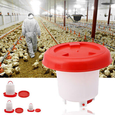 Poultry  Chicken Feeder Chick Hen Quail Automatic Waterer Drinker  3 Capacity