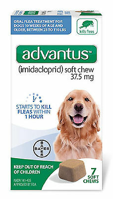 BAYER ADVANTUS ORAL FLEA TREATMENT FOR BIG DOGS 23-110 LBS 37.5mg - 7 SOFT CHEWS