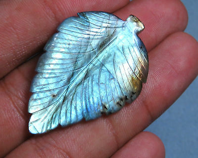 47.3 Cts Natural Labradorite Carved Leaf Flashy Reflactive Blue Fire Carving