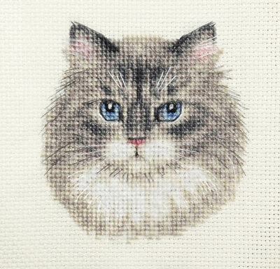 GREY TABBY CAT, KITTEN ~ Full counted cross stitch kit + All materials *Fido