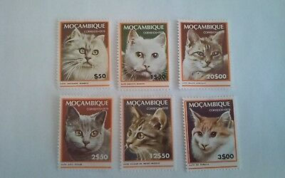 "Mozambique Stamps ""Cats"" Complete Set of 6  REMARKABLE!!"