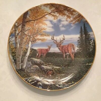 """Woodland Meadow"" WILDERNESS REFLECTIONS Deer by John Van Straalen Danbury Plate"