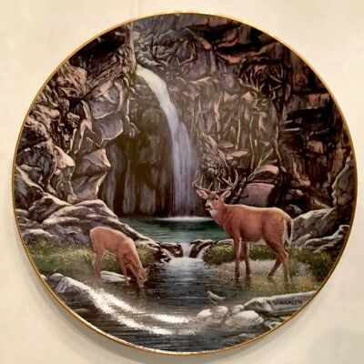 """SHELTERED COVE""WILDERNESS REFLECTIONS DEER John Van Straalen Danbury Mint Plate"