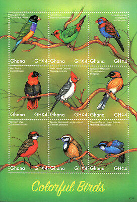 Ghana 2017 MNH Colorful Birds Gouldian Finches Babblers 9v M/S Bird Stamps