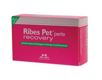 NBF Lanes Ribes Pet Recovery 60 Perle