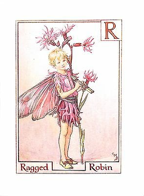 Initial R.Flower Fairy print.Ragged Robin.1923.Cicely Mary Barker.Genuine.Old