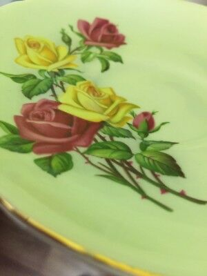 Royal Grafton Fine Bone China Saucer Made in England Green With Roses