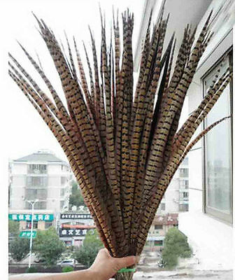 5/10/50/100/200pcs beautiful natural pheasant tail feathers 25-100cm /10-40inch