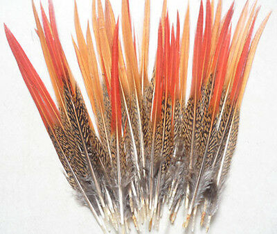 Wholesale,20-500pcs beautiful Natural pheasant tail feathers, 6-8 inch