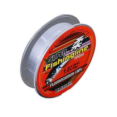 100m Nylon Transparent Fishing Line Fishing Tackle Fish Wire Stronger 3.8kg-21kg
