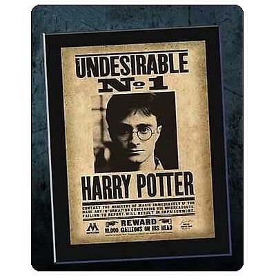 Harry Potter - Undesirable No. 1 Mounted Sign on Wood - New!