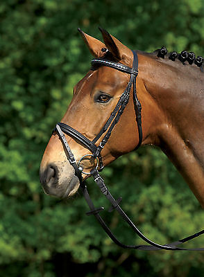Snaffle,Snaffle,Bridle STAR CRYSTAL LITTLE HEARTS english combination