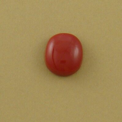 Round Red Cabochon, old stock rosarita glass, 16x14x6mm coral substitute