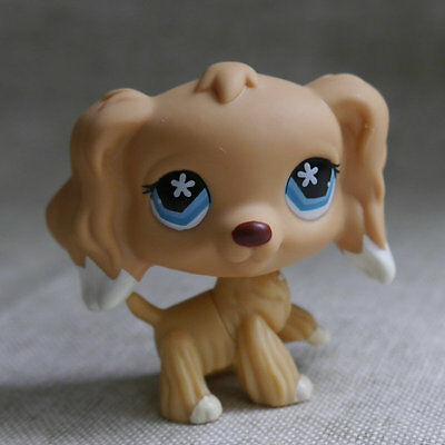 "LPS COLLECTION  Blue Eyes Cocker DOG RARE TOY 2"" # LITTLEST PET SHOP"