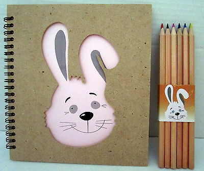 Drawing Book With Cutout Bunny Rabbit Face On The Cover Plus 12 Coloured Pencils