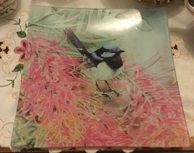 Blue Wren Glass Plate