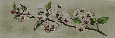 Signed Cool - Cherry Blossoms Cherries