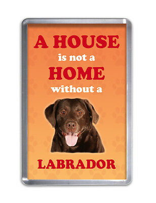 A HOUSE IS NOT A HOME W/O A LABRADOR (CHOCOLATE)- Dog Fridge Magnet Animal Gift