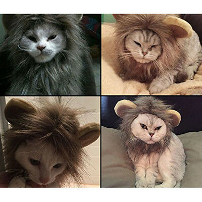 Furry Pet Hat Costume Lion Mane Wig For Cat Halloween Dress Up Clothes With Ears