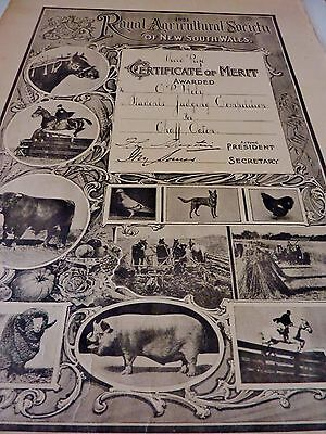 1924 AUSTRALIAN ROYAL AGRICULTURAL SOCIETY CERTIFICATE of MERIT EASTER SHOW