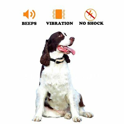 Waterproof Rechargeable Remote LCD Electric Pet Dog Training Shock Collar Golden