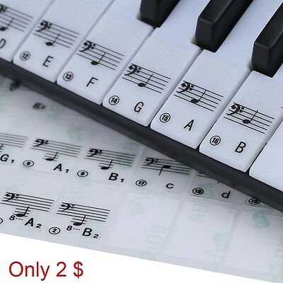 Pro Note Sticker Transparent 49 61 Key Electronic 88 Key Piano Stave Sticker