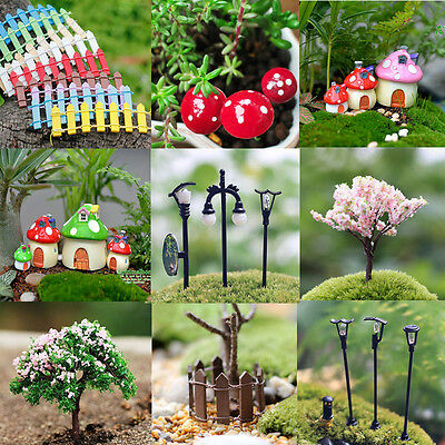 Miniature Fairy Garden Ornament Decor Pot DIY Craft Accessories Dollhouse Gift