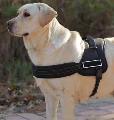 Brand New Control Large Dog Training Pulling Harness Fully Adjustable And Comfy