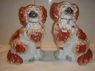 A Pair of Classic Original 1890's Staffordshire Pottery Dogs