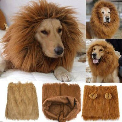 Pet Costume Dog Lion Wigs Mane Hair Scarf Clothes For Party Halloween Festival F