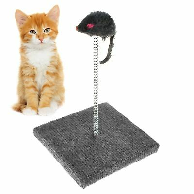 Cat Kitty Pet Spring Moving Play Toy Scratcher Scratching Pad Mouse Toy Game
