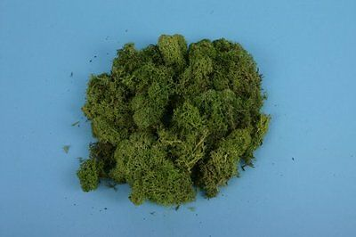 Light Green Lichen (80g) All gauges – Gaugemaster GM164 – Free post F1
