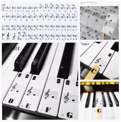 Piano Key Note Abc Keyboard Stickers Learning Learn To Play Music Keys Reuseable