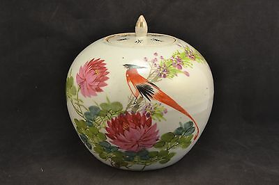 Antique Chinese Ginger Jar Asia   ND 3202