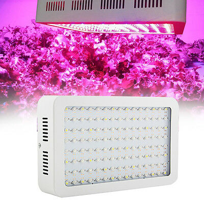2000W LED Plant Grow Light Full Spectrum Two Chips for Hydro Medical Garden US