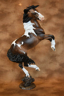 Resin Model Horse Mustang Mephisto Resin by Sarah Rose / Julie Kuiper