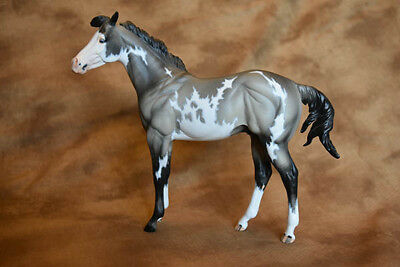 Resin Model Horse OKIE TOO by Carol Williams / Julie Kuiper