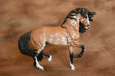 Resin Model Horse TANGO by Minkiewicz-Breunig and Carol Williamss