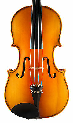 "Ideal Student 16"" Viola – made by Lark, sold with a case + new strings"