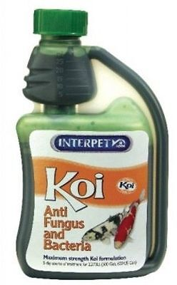 INTERPET ANTI FUNGUS/BACTERIA KOI FISH POND WATER TREATMENT BLAGDON 250ml