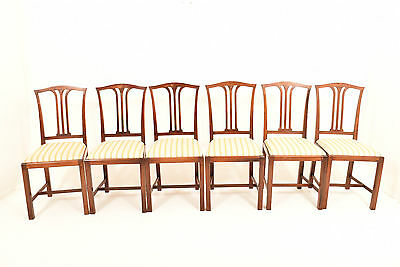 Six 20th Century Antique Edwardian Mahogany Dining Chairs With Makers Name.