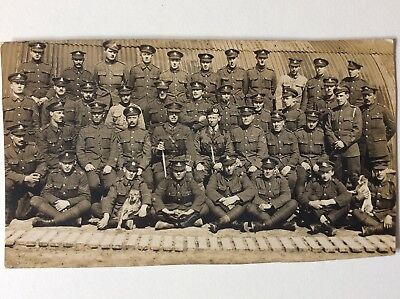 vintage postcard, WW1, mixed regiments, with dogs, plain back