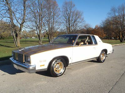 1979 Oldsmobile Other Gold 1979 Oldsmobile Hurst/Olds W30 Cutlass Calais 442 Other