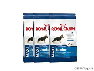 3 x Alimento per cani Maxi Junior Royal Canin 15 kg totale 45kg