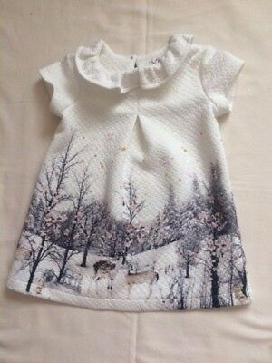 Next Baby Girls Christmas / New Years Party Dress 9-12 months