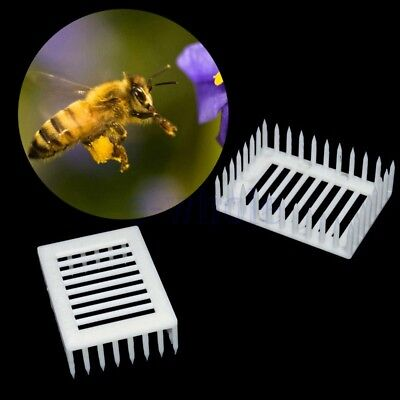 6Pcs White Queen Bee Cages Isolator Raring Catcher Trapper Outil apiculture KK
