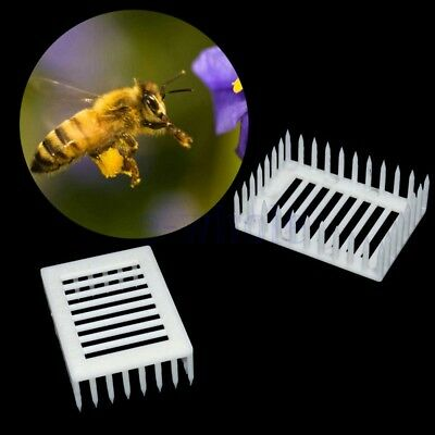 6x White Beekeeping Queen Bee Raring Cages Isolating Holder Catcher Needle KK