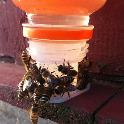 5Pcs New Bee Drinking Fountain Bee Insects Queen Bee Water Feeding Equipment KK