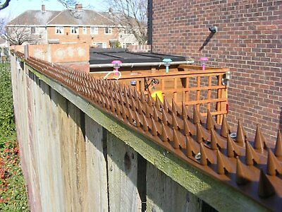 Fence Wall Spikes - Anti Climb Cat / Bird Spikes x 20 = 9 m / 29ft – BROWN